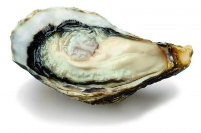 bienfaits des huîtres