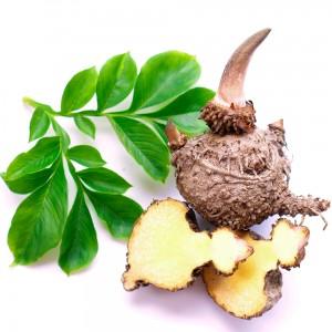 Les 13 meilleurs coupe faim naturels - Medicament coupe faim en pharmacie ...