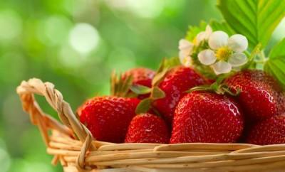 Vertus thérapeutiques des fraises