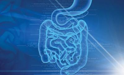microbiote intestins remedes sante