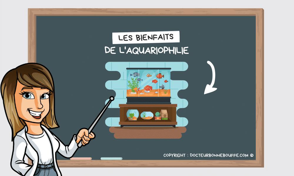 Un aquarium à la maison: Les bienfaits de l'aquariophilie sur notre santé