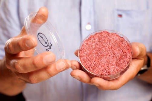 """Viande in vitro: Des """"frankenburgers"""" bientôt dans nos assiettes ?"""