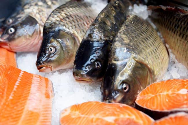 saumon norvégien dangereux santé