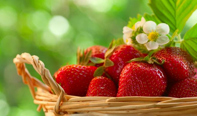 Vertus therapeutiques des fraises