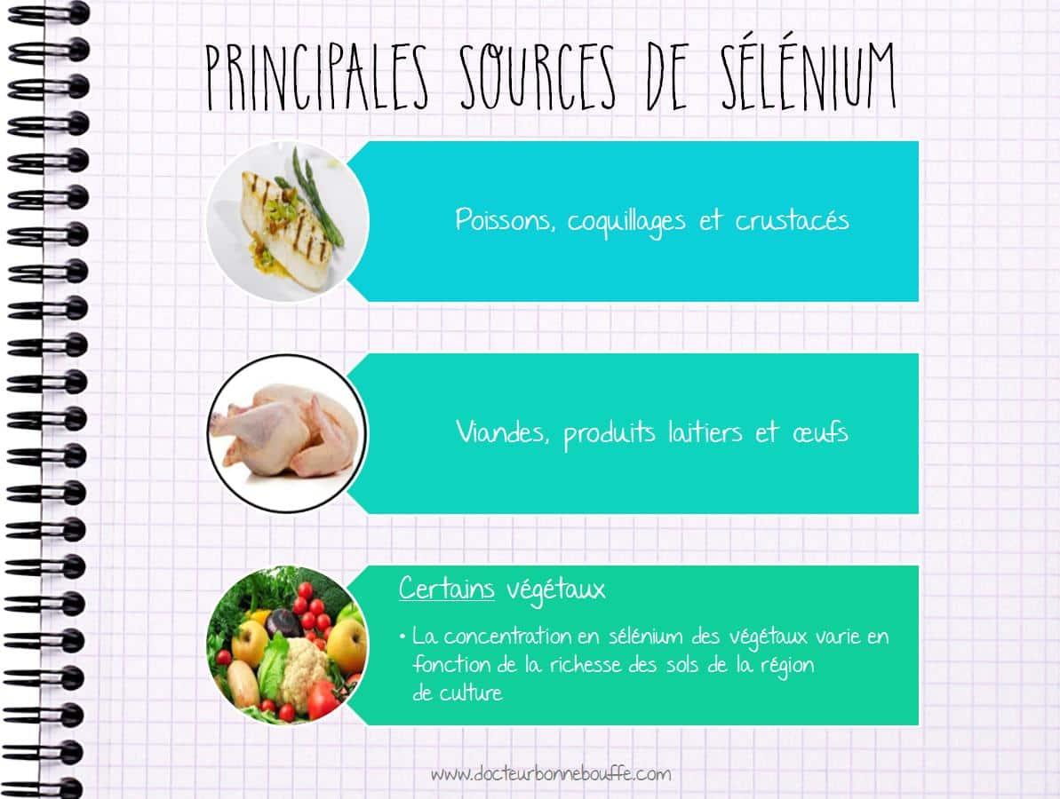 Principales sources de sélénium