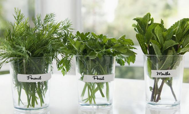 Bienfaits des herbes aromatiques
