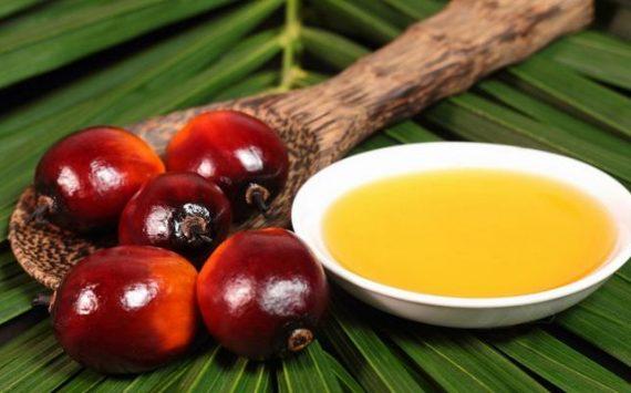 5 astuces pour éviter un surdosage d'huile de palme