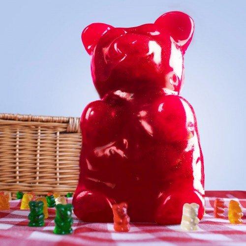 nounours mangeable géant idées cadeaux saint valentin