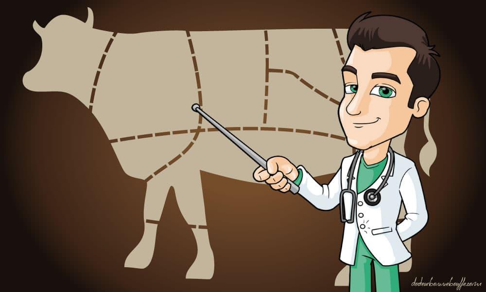 Origine des viandes : les résultats chocs de l'étude UFC Que Choisir