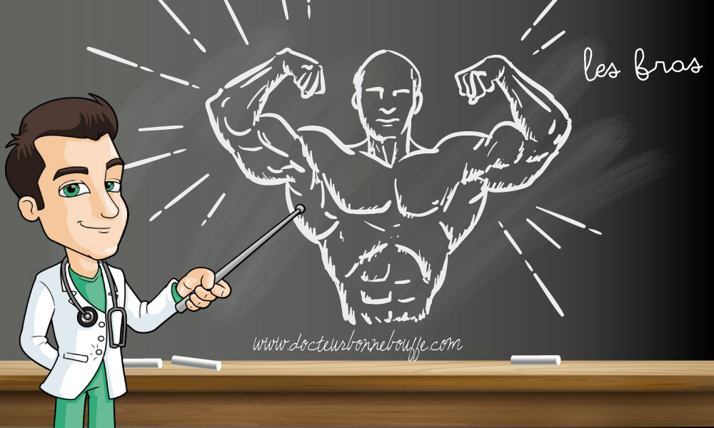 Musculation : Comment travailler les bras sans matériel ?