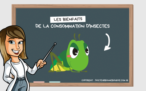 7 raisons de consommer des insectes !