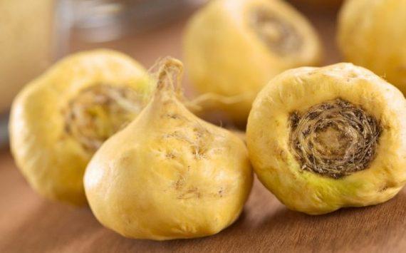 Maca : les 10 bienfaits des racines de maca