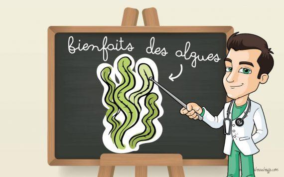 Bienfaits des algues alimentaires : 9 raisons d'en manger plus souvent !