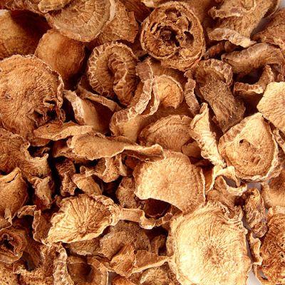 harpagophytum tubercule séchée