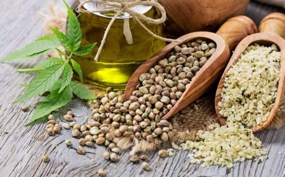 14 façons gourmandes de consommer des graines de chanvre