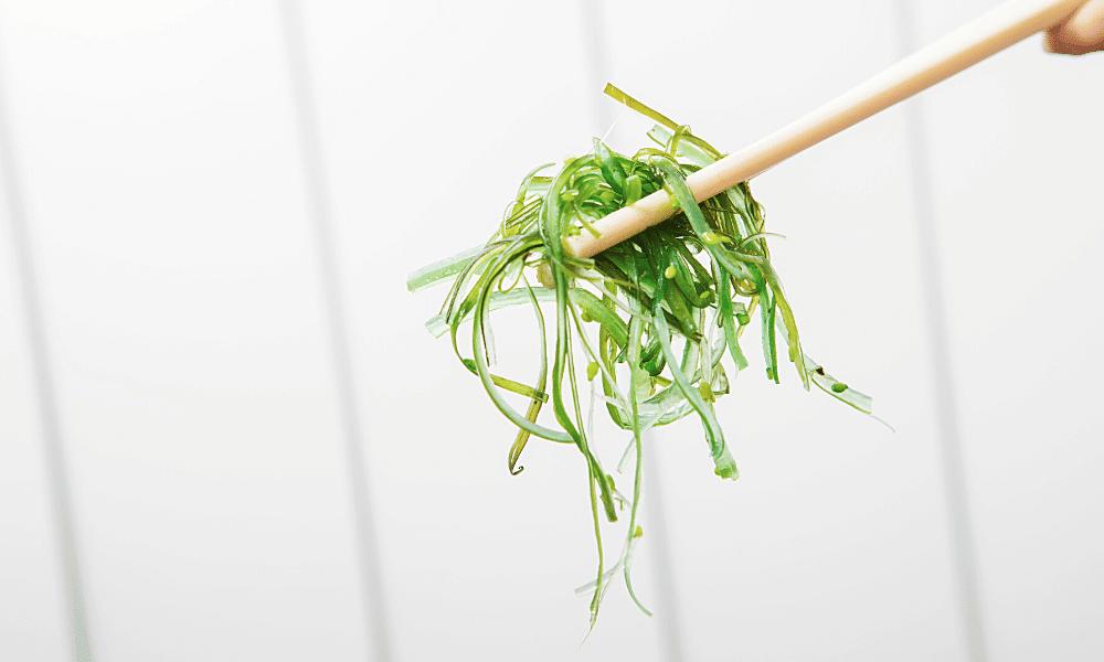 algues wakamé